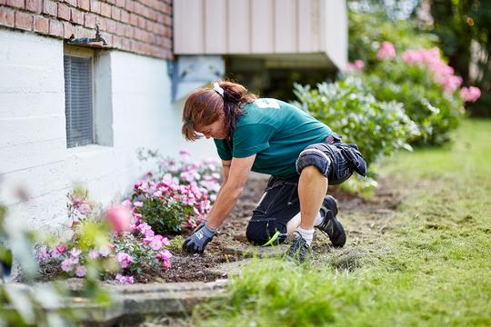 De fleste bofellesskap har grøntarealer som trenger vedlikehold